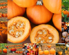 Nutrition Newsletter: October